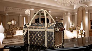 Trasportino Loius Vuitton 3d